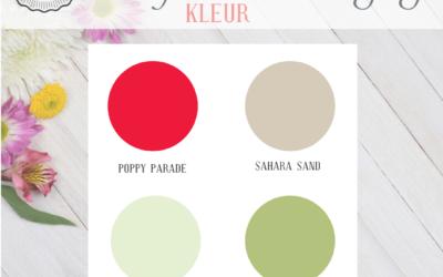 #MRSBIU1 – Kleur Uitdaging