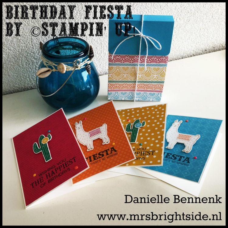 birthday-fiesta-notecardset
