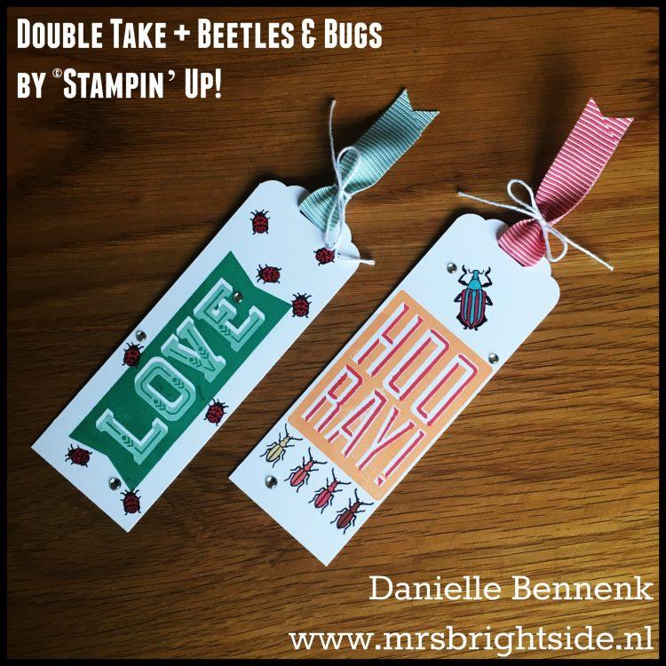 double-take-beetles-bugs